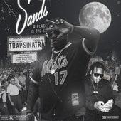 Trap Sinatra by PeeWee LongWay