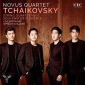 Tchaikovsky: String Quartet & Souvenir de Florence by Various Artists
