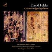 Felder: A Pressure Triggering Dreams by Various Artists