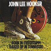 Born In Mississippi, Raised Up In Tennessee de John Lee Hooker