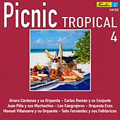 Picnic Tropical 4 by Various Artists