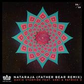 Nataraja by David Starfire