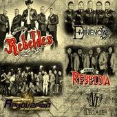 En Vivo, Vol. 1 by Banda Renovacion