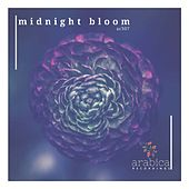 Midnight Bloom - Single by Various Artists