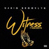 Witness by Dario Brooklyn