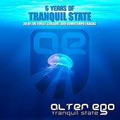Tranquil State: 5 Years Of - EP by Various Artists