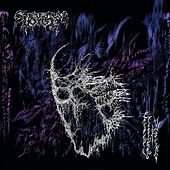 Eroded Corridors of Unbeing by Spectral Voice
