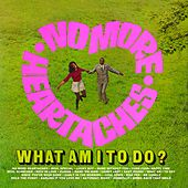 No More Heartaches / What Am I to Do by Various Artists