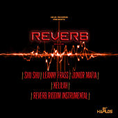 Reverb Riddim by Various Artists