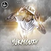 Whats the Difference by Yukmouth