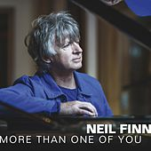 More Than One of You by Neil Finn