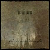 Wenn die ersten Blätter fallen by Walden