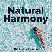 Natural Harmony - New Age Relaxing Songs and Chakra Balancing for Spirituality by Exam Study Classical Music Orchestra
