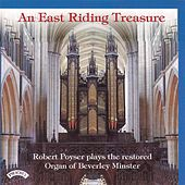 An East Riding Treasure von Robert Poyser