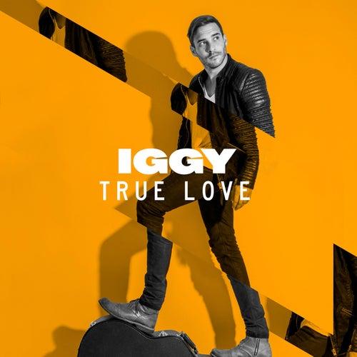 True Love (Cotone Remix) by Lions Head