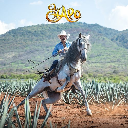 Emergencia En La Ciudad (Version Mariachi) by El Chapo De Sinaloa