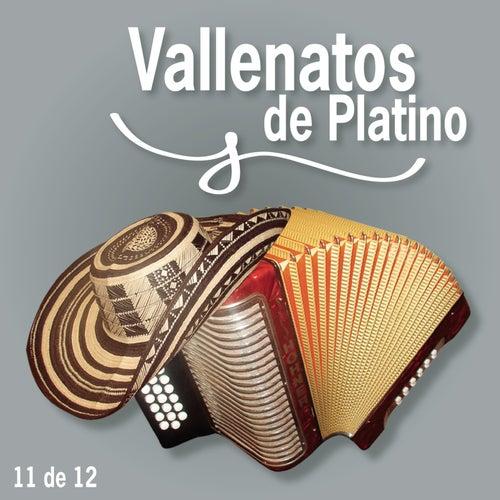 Vallenatos De Platino Vol. 11 by Various Artists