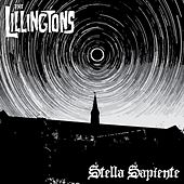 Stella Sapiente by The Lillingtons