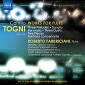 Togni: Works for Flute by Various Artists