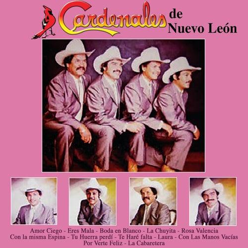 Amor Ciego by Cardenales De Nuevo León
