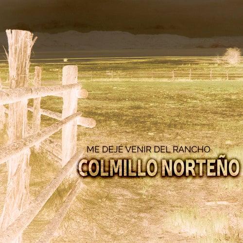 Me Dejé Venir Del Rancho by Colmillo Norteno