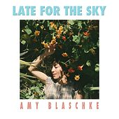 Late for the Sky by Amy Blaschke