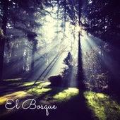 El Bosque (Musica Natural para Dormir y Calmarse) by Zen Music Garden