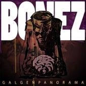 Galgenpanorama von Bonez