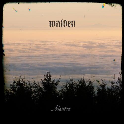 Mantra by Walden