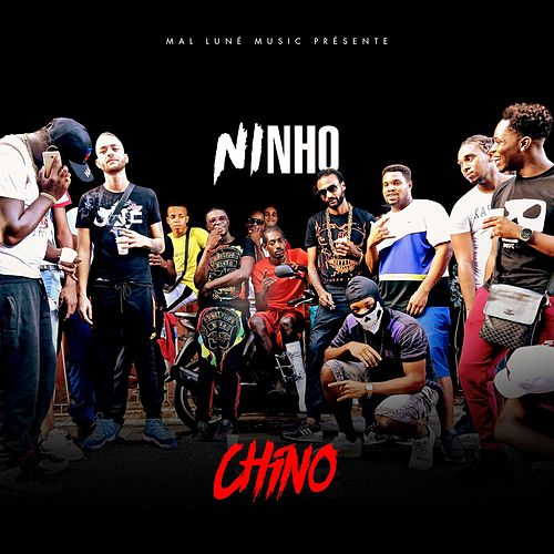 Chino de Ninho