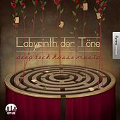 Labyrinth der Töne, Vol. 20 - Deep & Tech-House Music by Various Artists