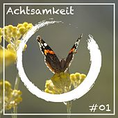 Achtsamkeit 1 by Various Artists