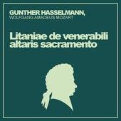Gunther Hasselmann: