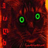 Numb by Coververve