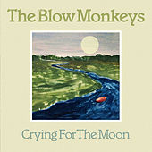 Crying For The Moon by The Blow Monkeys