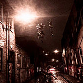 Night Walk by Craig Campbell