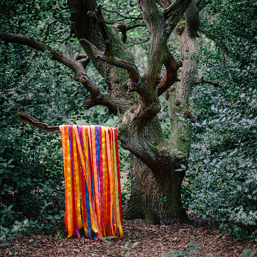 The Animal Spirits by James Holden