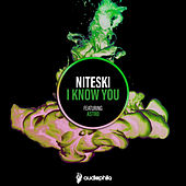 I Know You feat. Astro by Astro Niteski