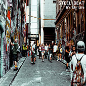 It's My Life by Steal Beat