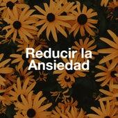 Reducir la Ansiedad - Canciones para lograr la Paz Interior de Alma y Cuerpo by Relax