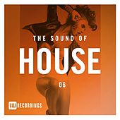 The Sound Of House, Vol. 06 - EP von Various Artists