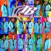Play & Download Evitame La Pena by Banda Tierra Blanca | Napster