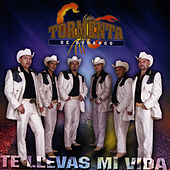 Play & Download Te Llevas Mi Vida by Tormenta De Durango | Napster
