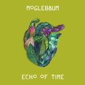Echo of Time von Moglebaum