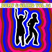 Bump and Grind, Vol. 24 by Various Artists