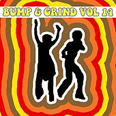 Bump and Grind, Vol. 14 by Various Artists