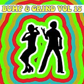 Bump and Grind, Vol. 15 by Various Artists