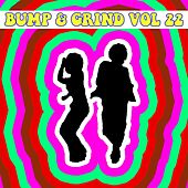 Bump and Grind, Vol. 22 by Various Artists