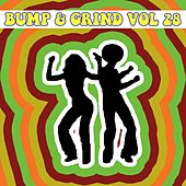 Bump and Grind, Vol. 28 by Various Artists
