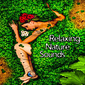Relaxing Nature Sounds – Soft Music to Calm Down, Easy Listening, New Age Nature Melodies, Quiet Sounds by Sounds of Nature Relaxation